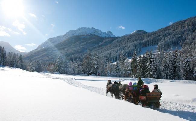 A cosy sleigh ride through the snow-covered valley